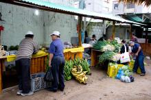 Agroécologie et marchés locaux dans le nord des Andes de l'Equateur Vignette