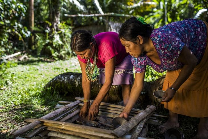 Un savoir ancestral inestimable au Pérou Image principale