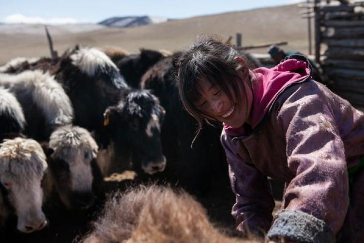 La tradition sauve le futur en Mongolie Image principale