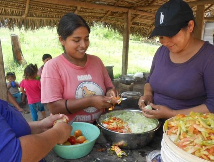 Un jardin communautaire pour nourrir les familles en Bolivie Image principale