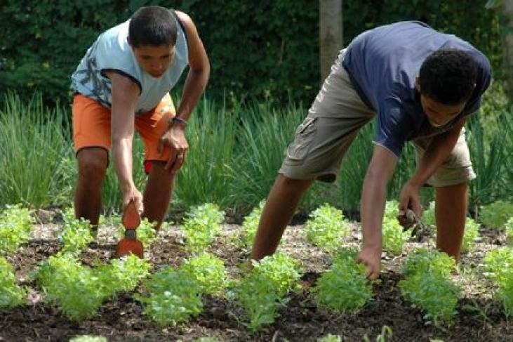 Un nouveau groupe de travail sur la transition agroécologique Image principale