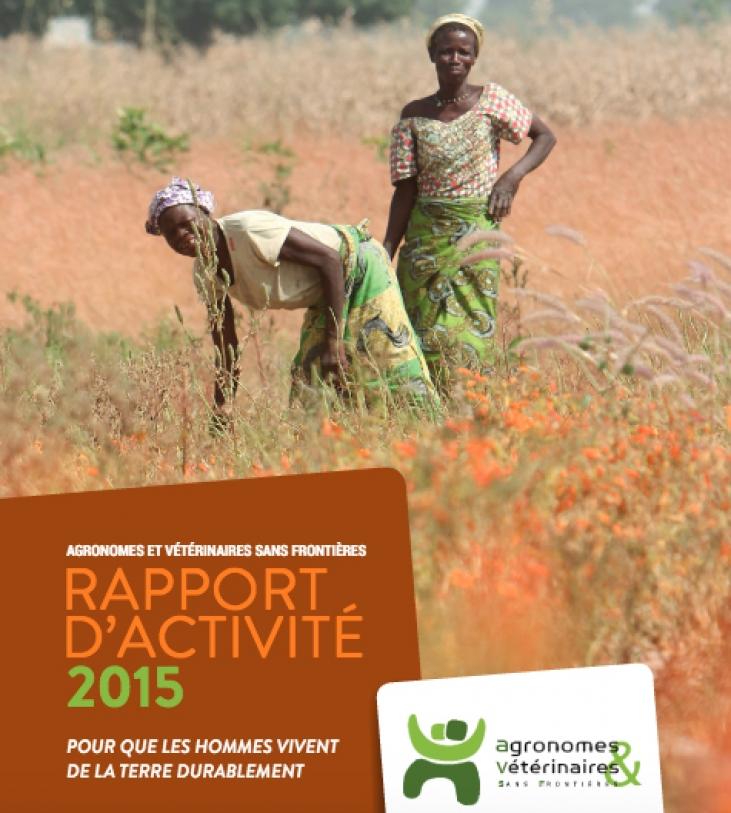 Rapport d'activité 2015 Image principale