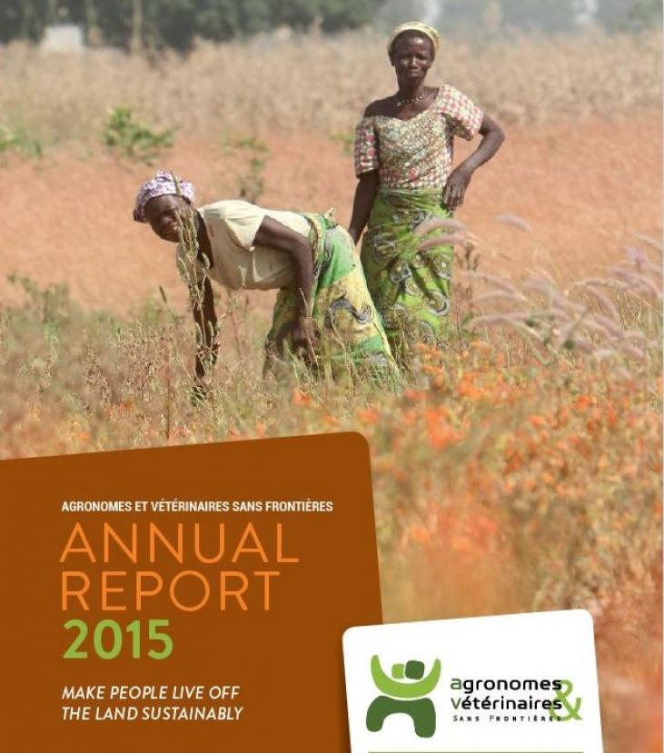 Annual report 2015 Image principale