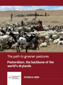 The path to greener pastures. Pastoralism, the backbone of the world's dryands Vignette