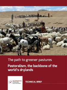 The path to greener pastures. Pastoralism, the backbone of the world's dryands Image principale
