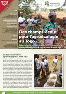Les expériences innovantes d'AVSF : Des champs-école pour l'agroécologie au Togo Vignette