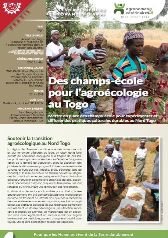 Les expériences innovantes d'AVSF : Des champs-école pour l'agroécologie au Togo Image principale