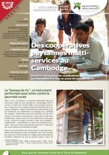 Les expériences innovantes d'AVSF : Des coopératives paysannes multi-services au Cambodge  Vignette