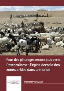 Pastoralisme : l'épine dorsale des zones arides dans le monde Vignette