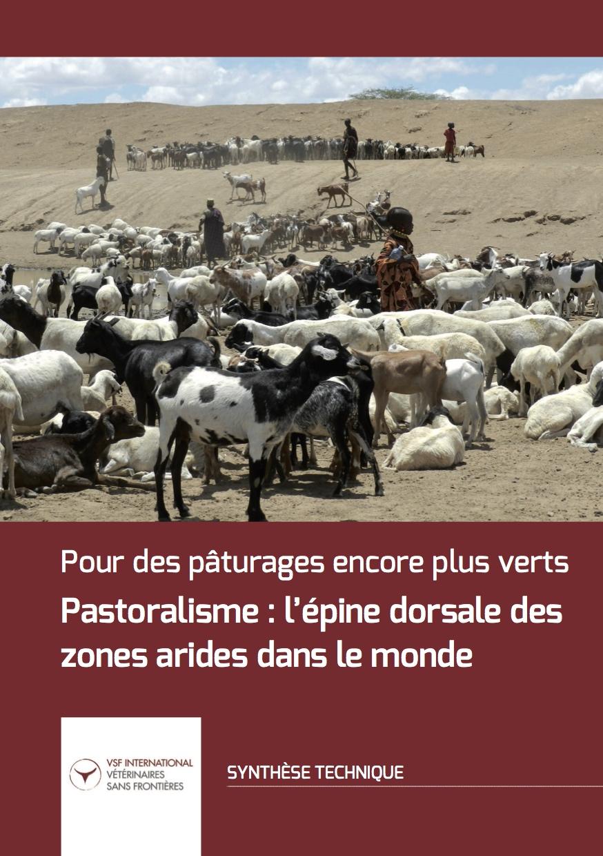 Pastoralisme : l'épine dorsale des zones arides dans le monde Image principale