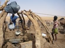 Prévention des conflits agriculteurs-éleveurs. Vignette