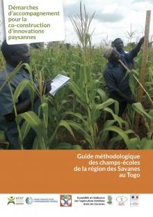 Guide méthodologique des champs-écoles de la région des Savanes au Togo Vignette