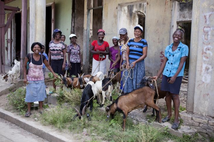 Réhabilitation et résilience post-ouragan Matthew en Haïti Image principale