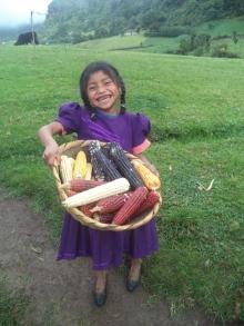 Production agoécologique pour les femmes et les jeunes Lenca au Honduras Vignette