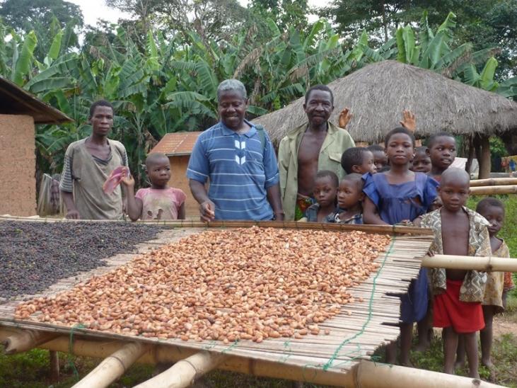 Commerce équitable en Afrique de l'Ouest Image principale