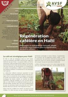 Les expériences innovantes d'AVSF : Régénération caféière en Haïti Vignette