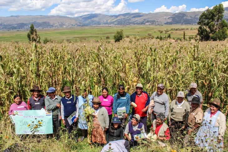Commerce équitable et maïs blanc à Cusco au Pérou  Image principale
