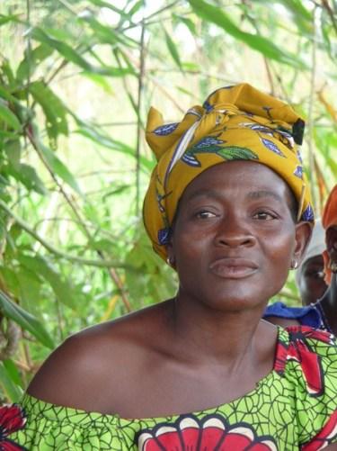 Durabilité et résilience de l'agriculture familiale dans la région des Savanes au Togo Image principale
