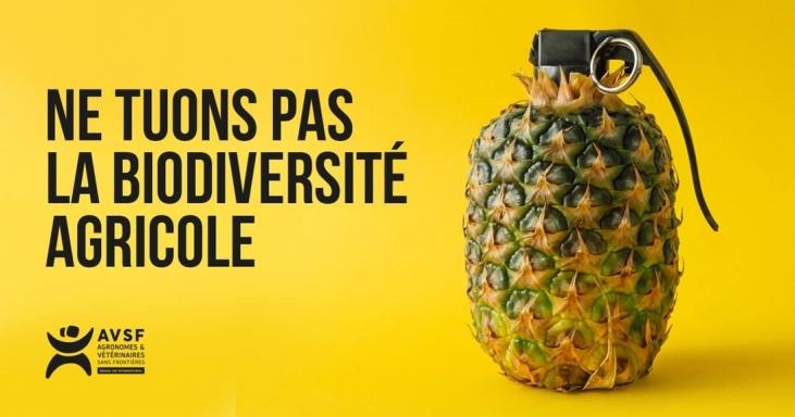 AVSF lance une nouvelle campagne de sensibilisation Image principale