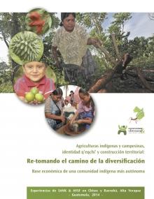 Agriculturas indígenas y campesinas, identiidad q'eqchi' y construcción territorial : re-tomando el camino de la diversificación  Vignette