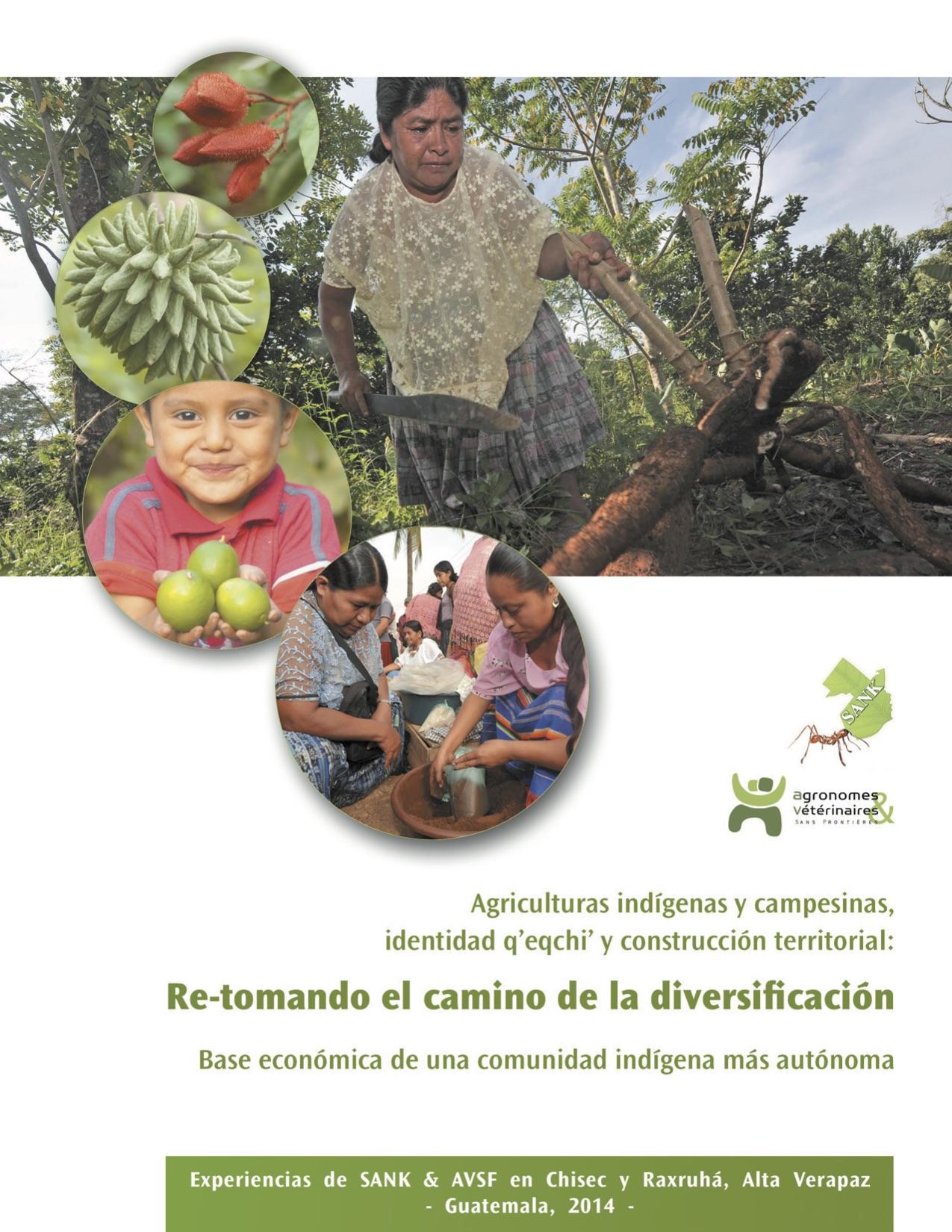 Agriculturas indígenas y campesinas, identiidad q'eqchi' y construcción territorial : re-tomando el camino de la diversificación  Image principale