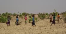 Le projet CALAO : évaluer les performances de l'agroécologie en Afrique de l'Ouest Vignette