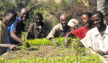 Un nouveau référentiel pour prouver l'efficacité de l'agroécologie et étendre ces pratiques Vignette