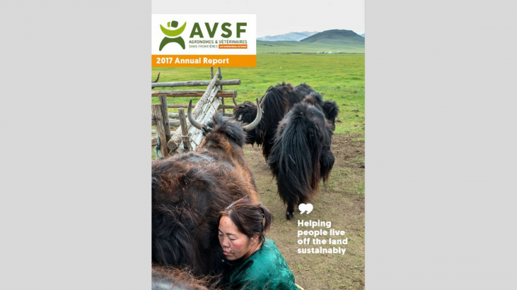 2017 Annual Report Image principale