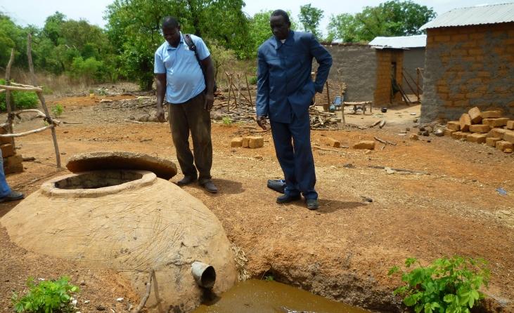 Mali : des bovins au secours de la forêt  Image principale