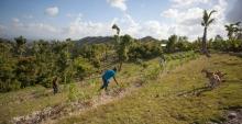Changement climatique : réduire la vulnérabilité des paysans  Vignette