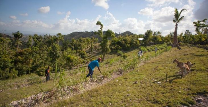 Changement climatique : réduire la vulnérabilité des paysans  Image principale