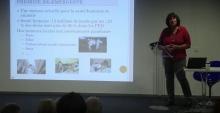 Conférence : humains & animaux, une seule santé Vignette