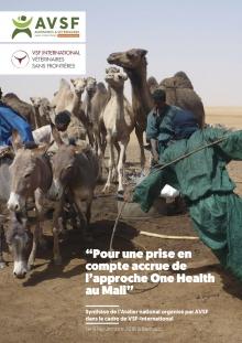 Pour une prise en compte accrue de l'approche One Health au Mali Vignette