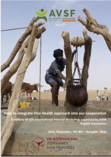 How to integrate One Health approach into our cooperation? Vignette