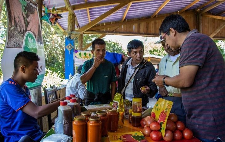 Agroécologie pour la paix en Colombie Image principale