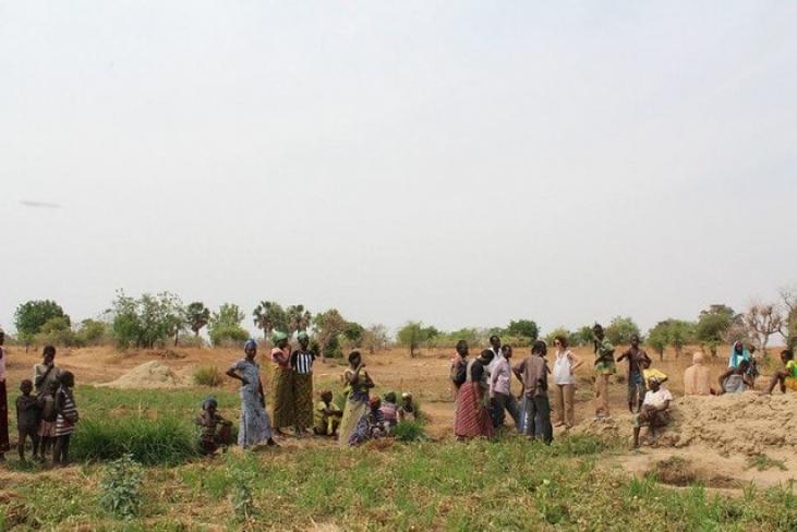 Transitions agroécologiques en Afrique de l'Ouest Image principale