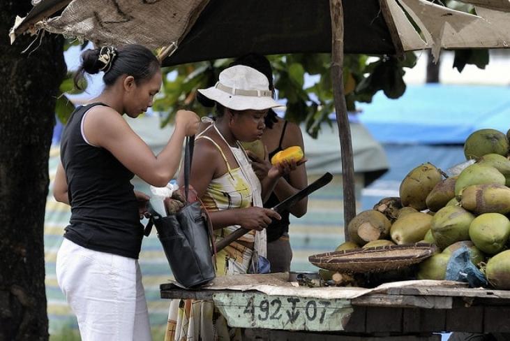 Commerce équitable de vanille, litchis, fruits et épices à Madagascar : le projet Agricoop Image principale