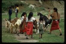 Defender el territorio indígena ixil en Guatemala Vignette