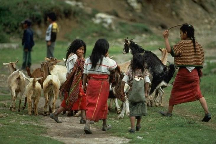 Defender el territorio indígena ixil en Guatemala Image principale