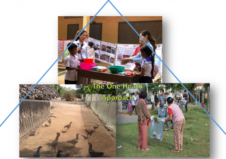 Veterinary public health in Cambodia Image principale