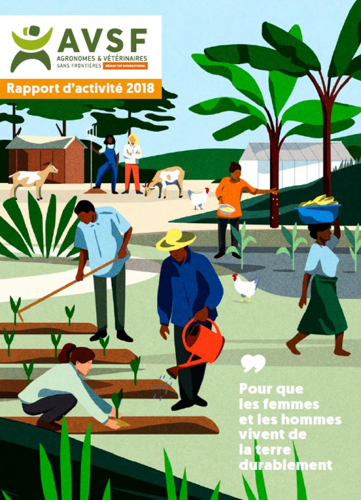 Rapport d'activité 2018 Image principale