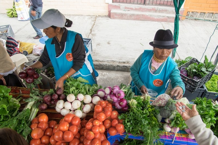 Journée mondiale de l'alimentation : bien manger et sauver la planète Image principale