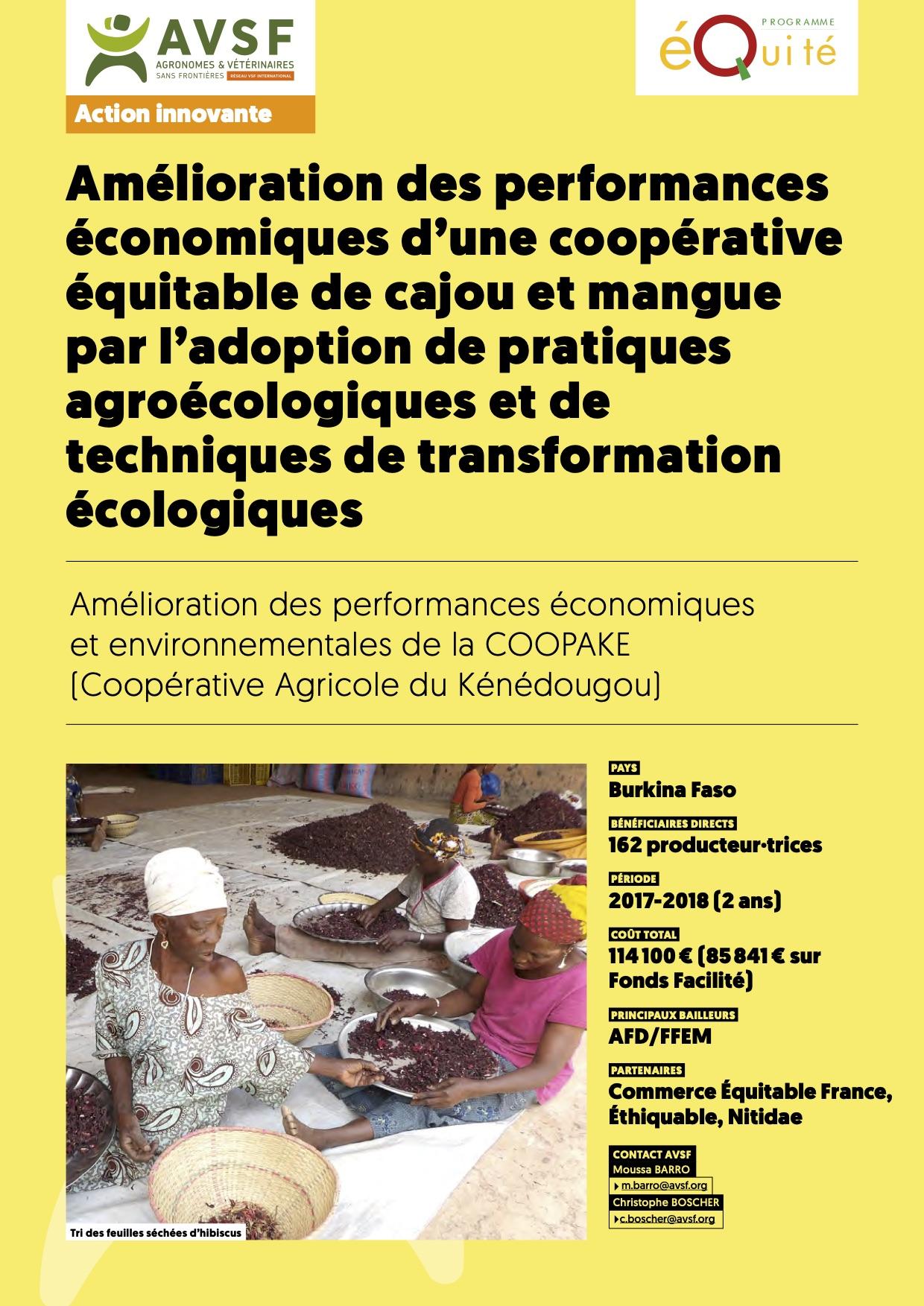 Les actions innovantes d'AVSF: commerce équitable et production agroéoclogique paysanne de cajou et mangue au Burkina Faso  Image principale