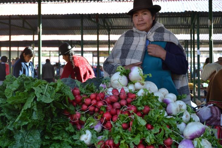 Des filières au service de l'agroécologie Image principale