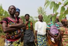 4 projets qui participent à l'émancipation des paysannes Vignette