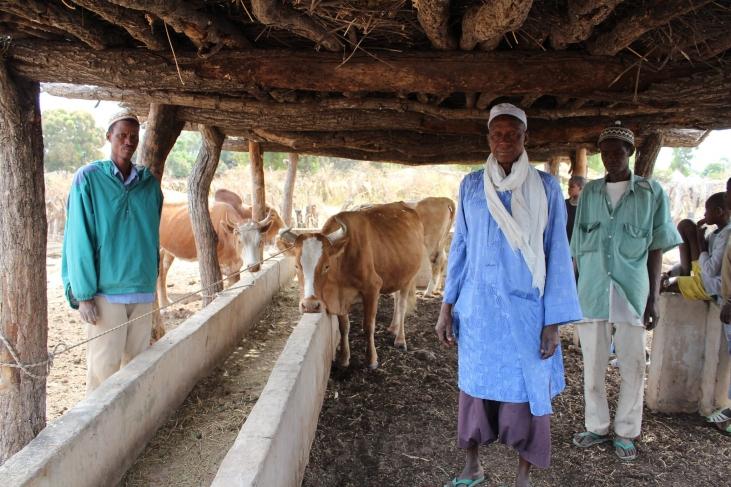 One Health, une approche-clé pour faire face aux crises futures Image principale