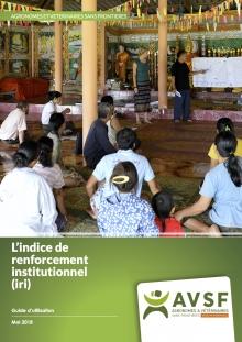 L'indice de renforcement institutionnel (IRI) : guide d'utilisation  Vignette