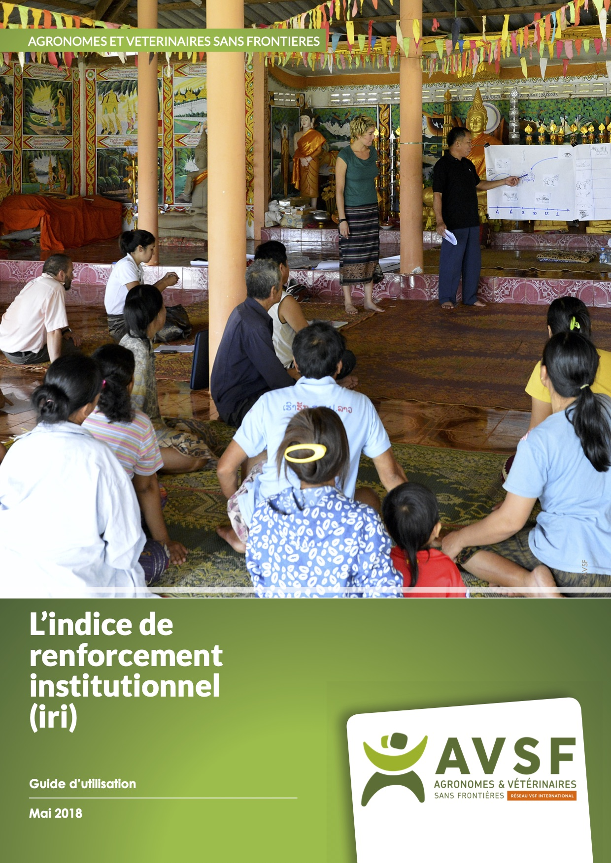 L'indice de renforcement institutionnel (IRI) : guide d'utilisation  Image principale