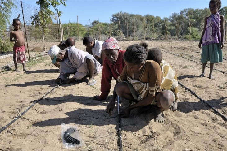 Madagascar : micro-irrigation et partage d'information Image principale