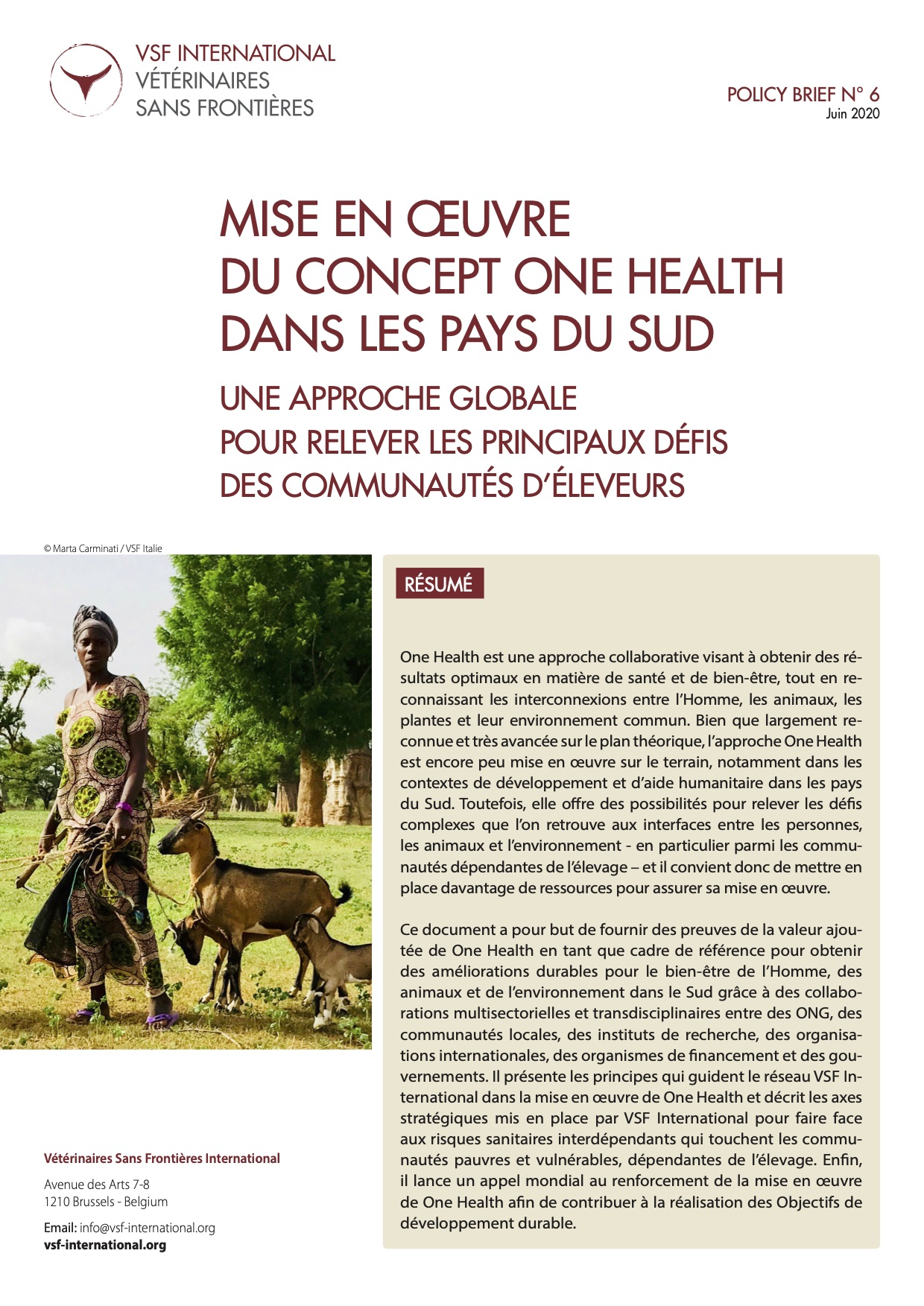 Mise en œuvre du concept One Health dans les pays du Sud : policy brief de VSF-International Image principale